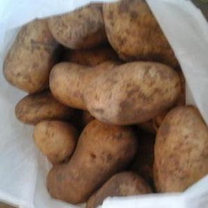 Aardappelen De Herenthoeve