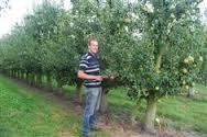 Fruit Myngheer Lv