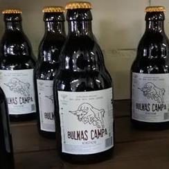 Bulnas Campa Agastache