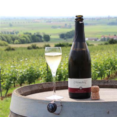 Witte mousserende wijn Monteberg