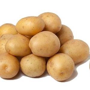 Aardappelen (krieltjes) Hoeve Vindevoghel