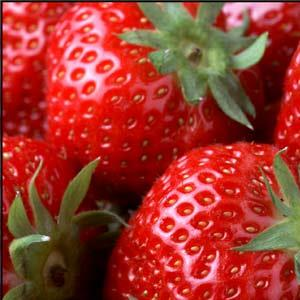 Aardbeien Hoeveproducten Vindevoghel
