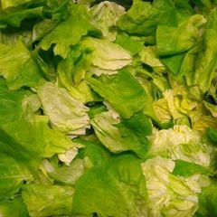 Botersla Dejonghe Salads