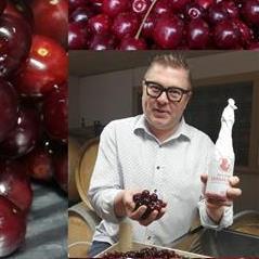 Reninge Krieken Rood